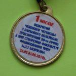 Відкритий чемпіонат м.Чернігова з паркового волейболу серед працівників закладів освіти